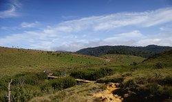 Horton's plains national park.
