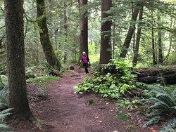 Spirit Trail Walk
