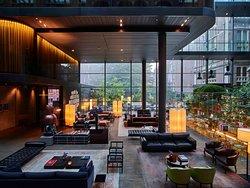 阿姆斯特丹温室酒店