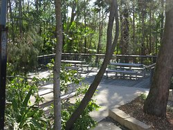 These tables adjoin the barbecue area at Joseph Banks Native Plants reserve