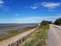 Hayling Billy Trail