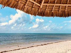 hotel's semi-public beach