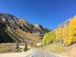 On the very short road trip from Ophir Pass to Black Bear Pass.