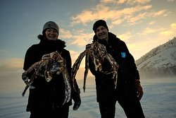 King Crab Safari by Snowhotel Kirkenes