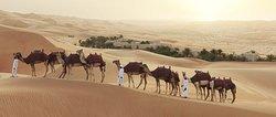 蓋斯爾阿薩拉安納塔拉沙漠度假酒店