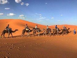 Morocco Desert Trek - Day Tours