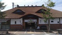 Tama Museum Kishi Station