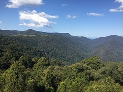 Wonderful views over Dorrigo National Park at the end of the Skywalk.