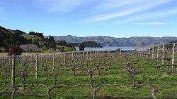 French Peak Wines