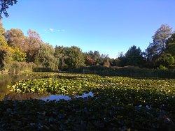 Ogrod Botaniczny w Lodzi