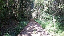 inizio sentiero per le escursioni