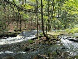 Little Falls Trail
