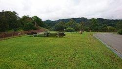 Yachiyo Farm