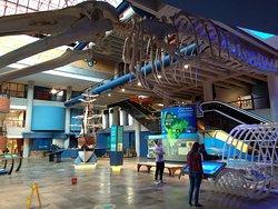 พิพิธภัณฑ์วิทยาศาสตร์และเทคโนโลยี