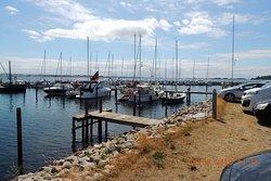 Vue ud over havnen, der er frie pladser