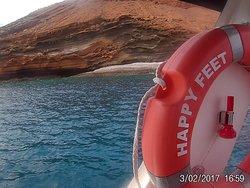 Happy Feet Boat Trips