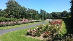 都柏林圣安妮公园