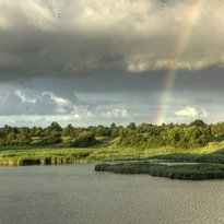 Natuurgebied De Pluimpot