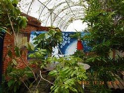 三峽藍染展示中心