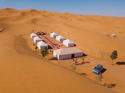 Desert Majesty