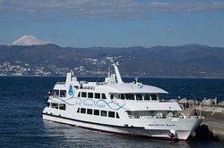 Hatsushima Ferry, Fujikyu Marine Resort