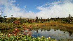 Mt. Naeba