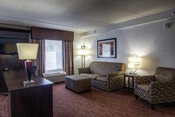 Hampton Inn and Suites Detroit/Airport-Romulus