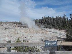 Back Basin: Steamboat Geyser in between eruptions