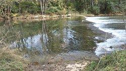 Cowpasture River - good fishing I hear.