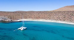 Baja Charters & Excursions