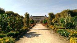 파리 식물원