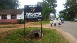 Tangawizi Spice Farm