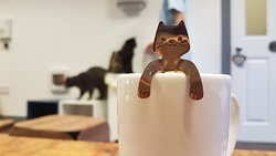 ‪Lazy Cat Cafe‬