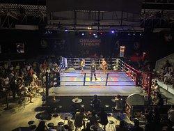 查汶拳击体育馆