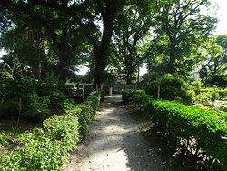 Jardines de San Carlos
