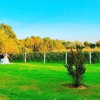 Wight - Meyer Vineyard & Winery
