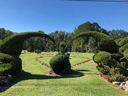 Fryar's Topiary Garden