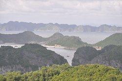 Ethnic Voyage - Day Cruises