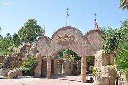 Kuwait Zoo