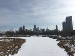 Strolling through Lincoln Park in the freezing month of February