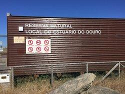Reserva Natural Estuario do Douro