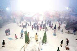 Maniar's Wonderland Snow Park