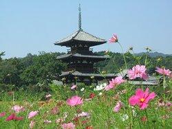 Hoki-ji Temple