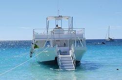Tranquility Cruises