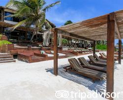 Beach at the Amansala Eco-Chic Resort + Retreat