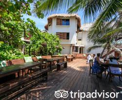 The Pool at Amansala Eco-Chic Resort + Retreat