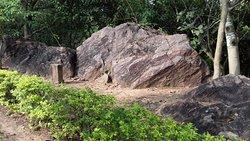 Ashokan Rock Edict