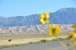 Great Sand Dunes National Park entrace area