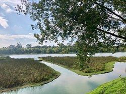 Parque la Florida