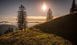 Blick Richtung Bregenzer Wald